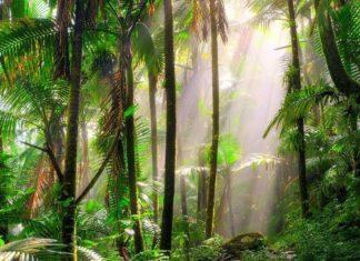 Trekking Costa Rica