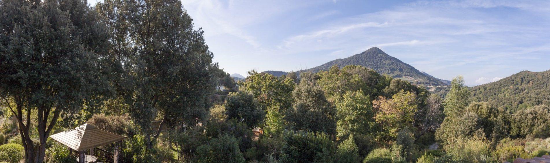 L'essentiel pour un séjour inoubliable en Corse